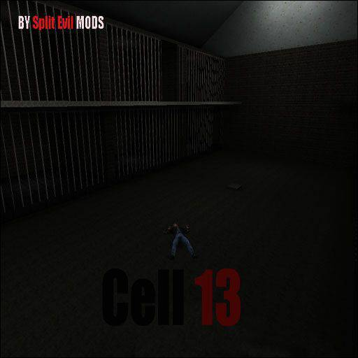 Cell_13