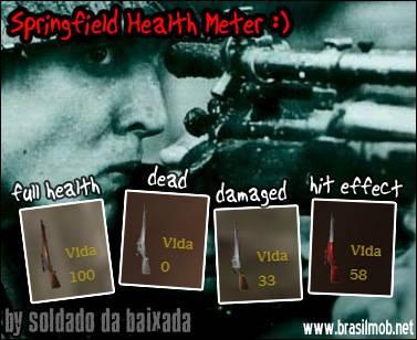 Springfield Health Meter