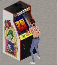 Digdug Arcade Game