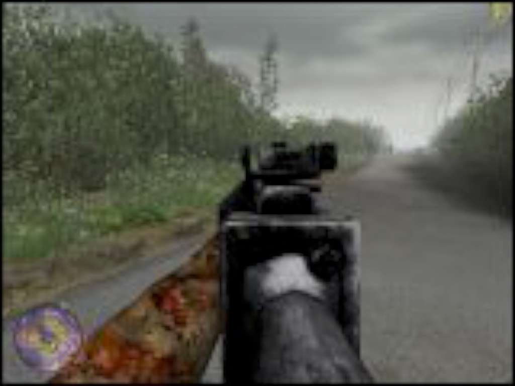 CoD2SP Mobile 30 Cal.